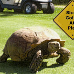 Will the Slow Golfers Please Get the Hell Out of the Way?