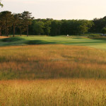 The Advent of Organic Golf Courses