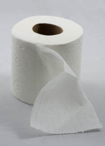 430px-Roll_of_toilet_paper_with_one_sheet_folded_down_in_front