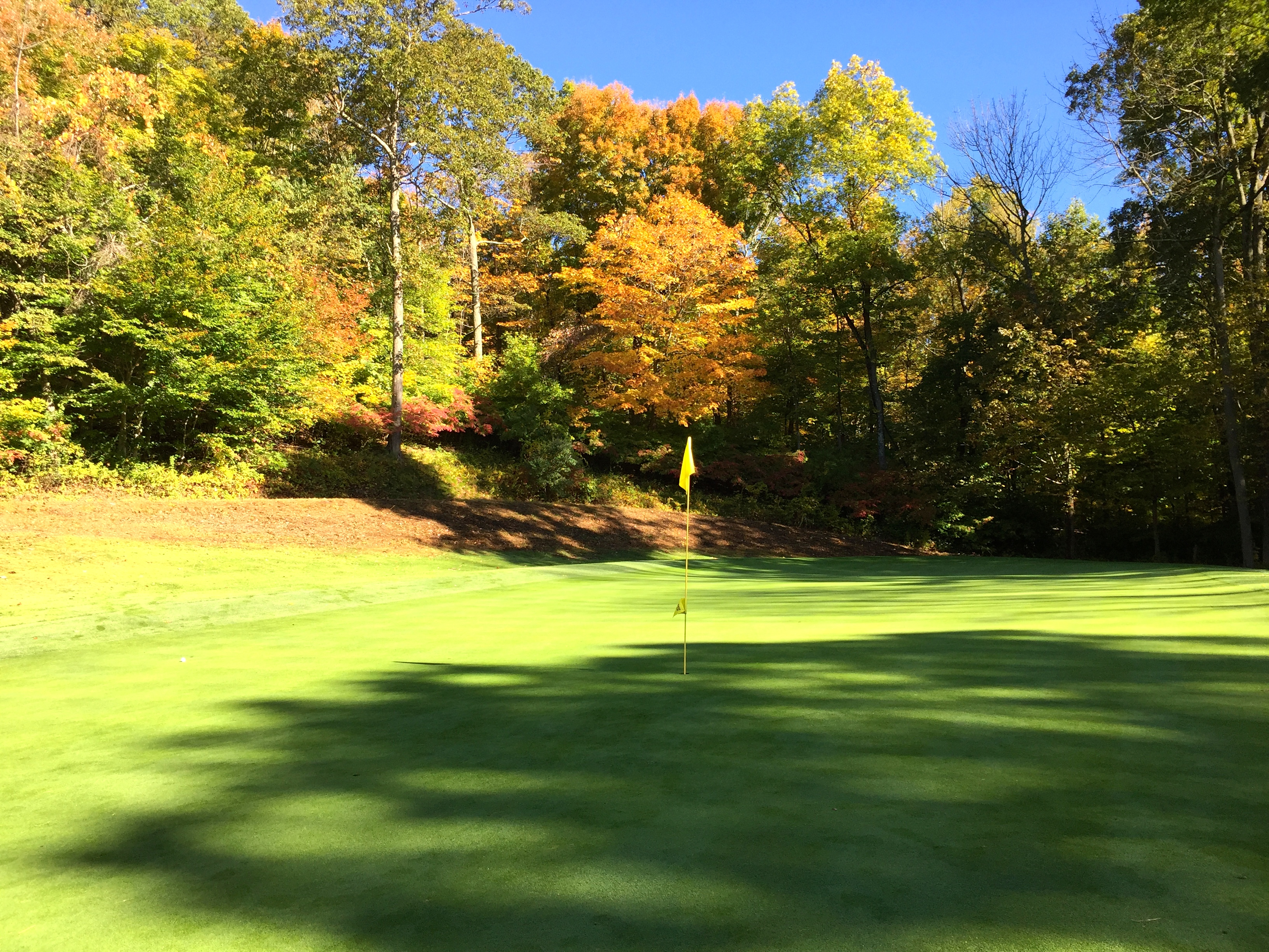 fall, autumn golf