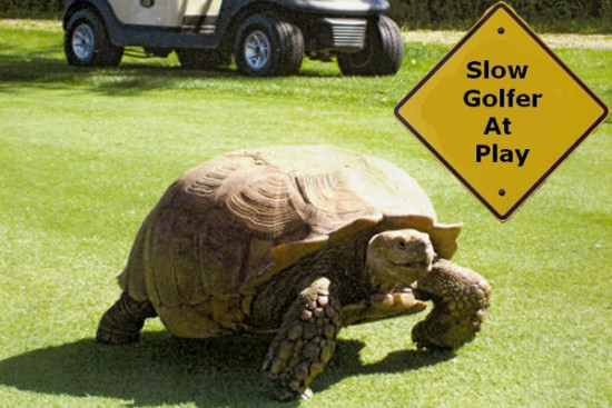 slow-play-golfer
