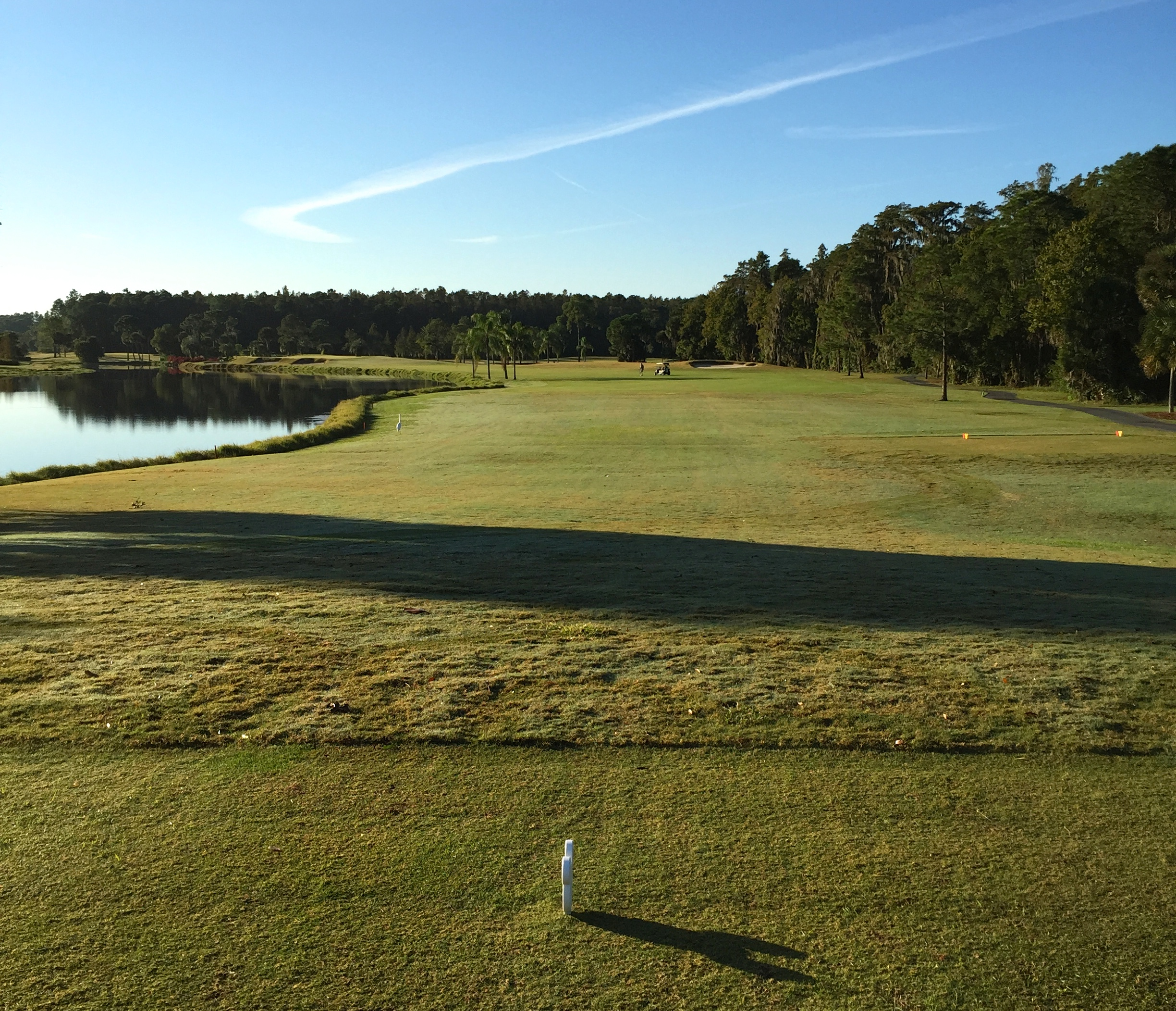 Disney's Palm Golf Course - 2nd hole (Photo by Greg D'Andrea)