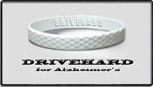 drivehard logo